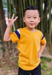 Colour Block T-Shirt YELLOW (Boy's T-Shirt)